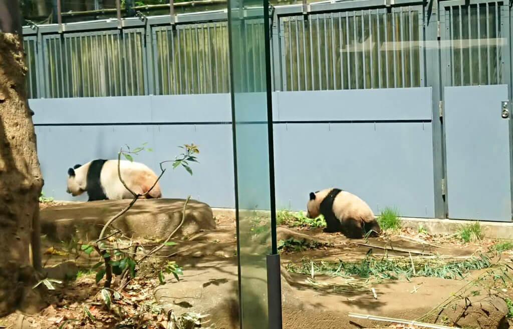 上野動物公園
