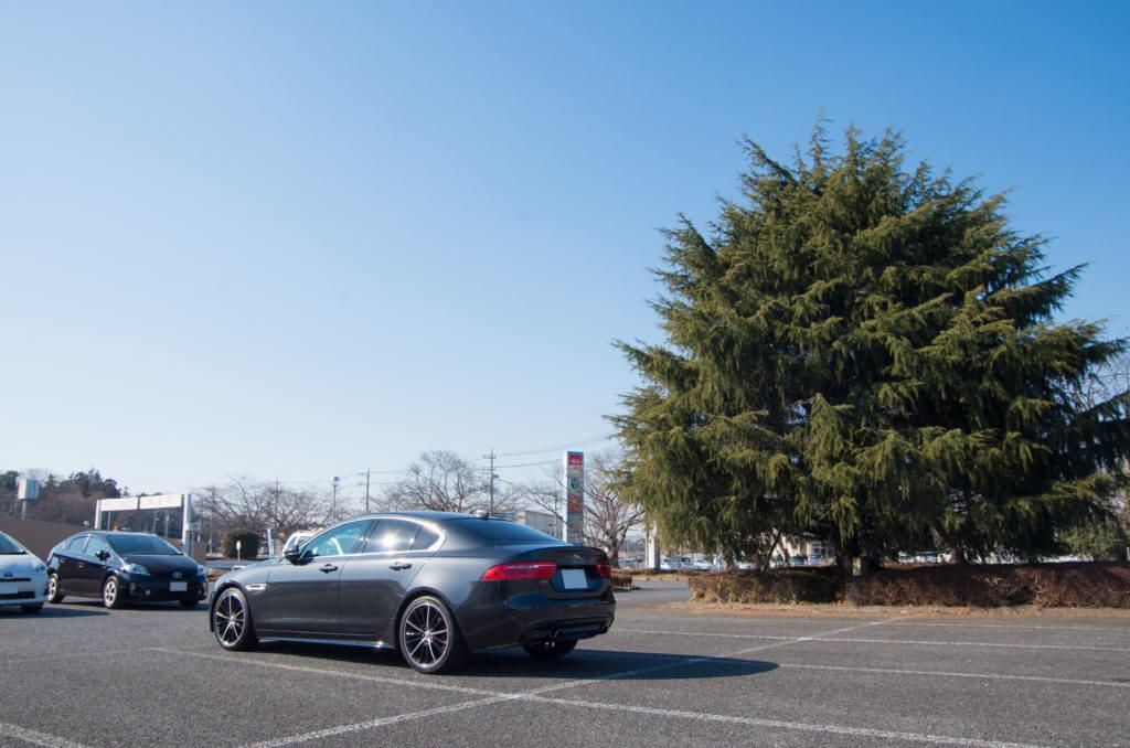 筑波山ドライブ